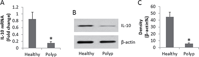 Assessment of IL-10 expression in peripheral DCs.