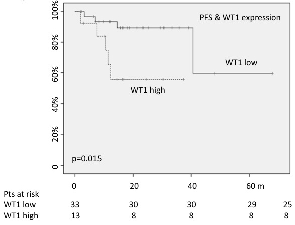 High WT1 expression played a negative impact on PFS.