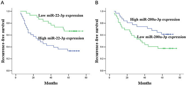Prognostic significance of miR-22-3p and miR-200a-3p expression.