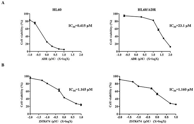 Antiproliferative activity of ZSTK474 in HL60 and HL60/ADR cells.