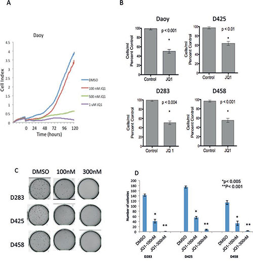 Inhibition of medulloblastoma cell growth by JQ1 in vitro.