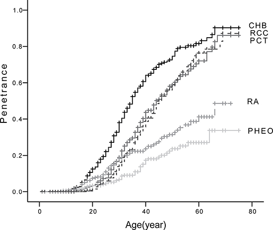 Age-related risks of the five major VHL lesions.
