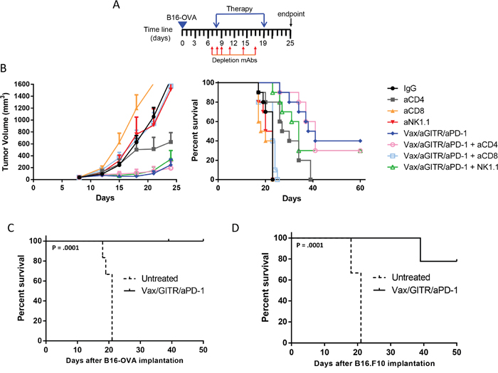Vax/aGITR/aPD-1 efficacy depends on CD8+ T cells and treatment induces long-term memory.