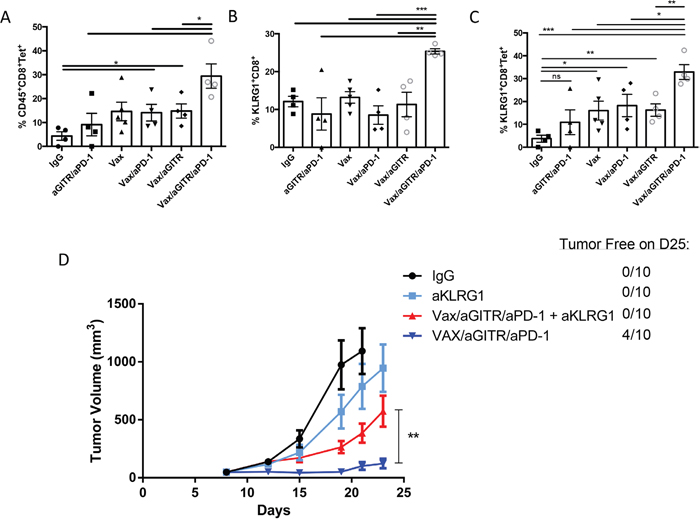 Combination Vax/aGITR/aPD-1 therapy expands tumor-specific CD8+ TILs and induces tumor clearance mediated in part by KLRG1+ effector-memory CD8+ T cells.