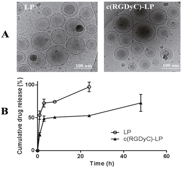 TEM images (A) and drug release profiles (B) from LP and c(RGDyC)-LP formulations.