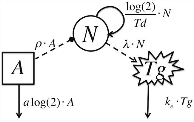 Schematic Model Diagram.