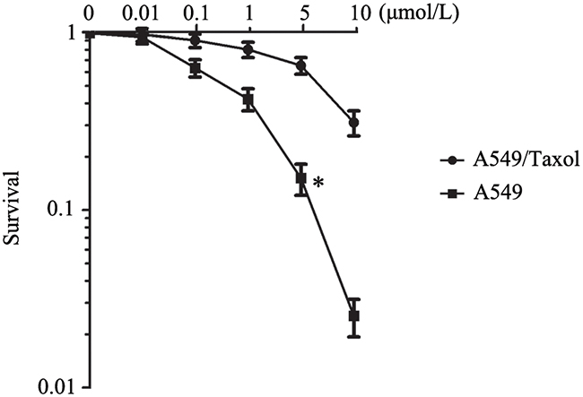 The establishment of paclitaxel resistance cell line A549/Taxol.
