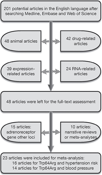 The selection process of qualified publications for this meta-analysis.