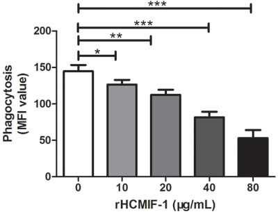 rHCMIF-1 decreased phagocytic capacity of goat monocytes.