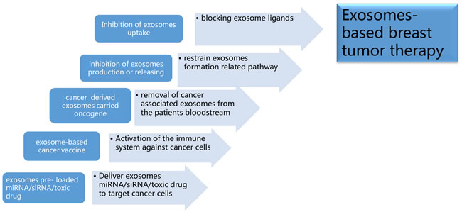 Exosomes-based breast tumor therapy.