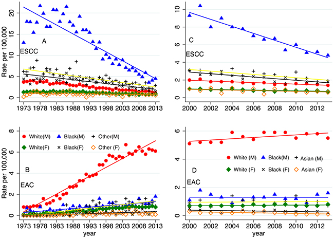 The age-adjusted SEER incidences according to race and sex: from 1973-2013 (SEER 9 registries, A, B), A-esophageal squamous cell carcinoma (ESCC); B-esophageal adenocarcinoma (EAC); from 2000-2013 (SEER 18 registries, C, D), C-ESCC, and D-EAC. The percentages are per 100,000 and age-adjusted to the 2000 United States Standard Population.