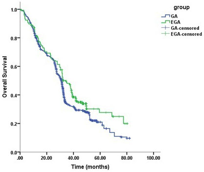 Kaplan–Meier survival curves for patients with and without epidural use (univariate