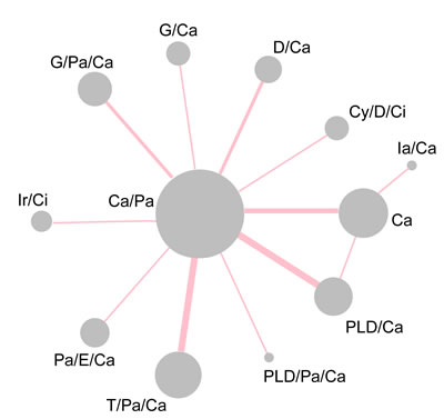Network diagram of all included studies.