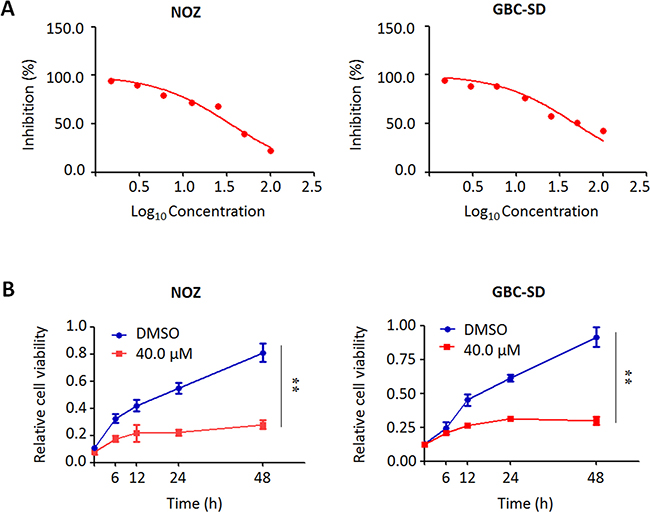 Inhibition of the proliferation of GBC cells by trametinib.
