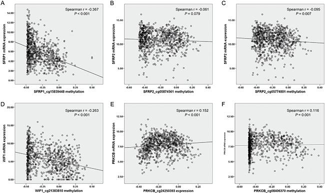 Correlation between 6 Illumina Human Methylation 450K CpG probes [(A) SFRP1_cg15839448, (B) SFRP2_cg05874561, (C) SFRP2_cg05774801, (D) WIF1_cg21383810, (E) PRKCB_cg24250393 and (F) PRKCB_cg08406370] and corresponding gene expression in 818 NSCLC from TCGA data portal.