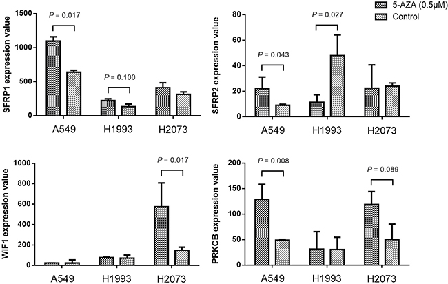 The expression value changes of SFRP1, SFRP2, WIF1 and PRKCB genes before and after 5'-Aza-deoxycytidine (0.5 μM for 6 days) treatment in three NSCLC cell lines (A549, H1993 and H2073).