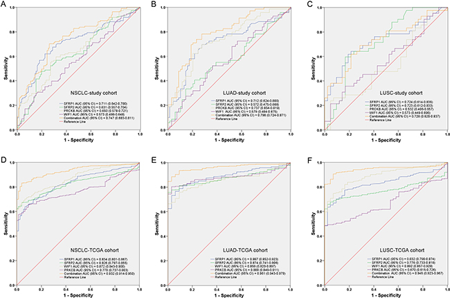 Receiver operating characteristic (ROC) curves for the methylation panel in (A) NSCLC, (B) LUAD and (C) LUSC of our study cohort and (D) NSCLC, (E) LUAD and (F) LUSC of TCGA cohort.