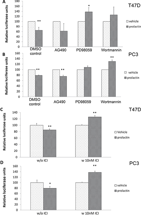 Prolactin activation of MAPK/ERK, PI3/Akt and ERα are involved in miRNA induction targeted to the 3′UTR of p21 mRNA.