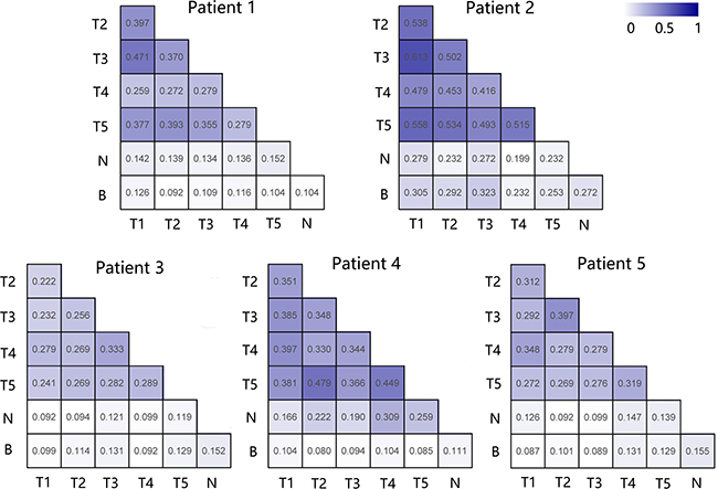 Comparison of the pairwise overlap of TCRβ repertoire between different samples of each patient.
