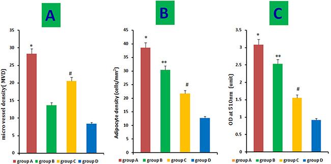 Quantitative measurement of adipogenesis and angiogenesis.