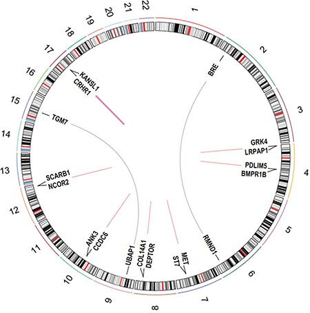 Circos plot of recurrent fusion genes detected in 220 EOC tumors.