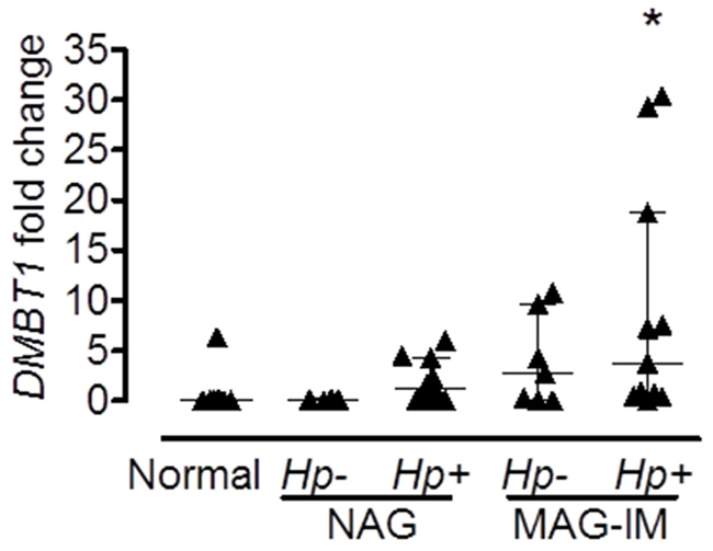 Expression of DMBT1 is associated with H. pylori infection.