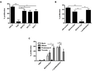 Intranodal delivery of targeted as well as BCII10-LVs encoding ovalbumin results in stimulation of ovalbumin-specific CD4