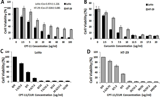 Effects of curcumin (CUR) and/or irinotecan (CPT-11) on cell viability in human CRC cell lines.
