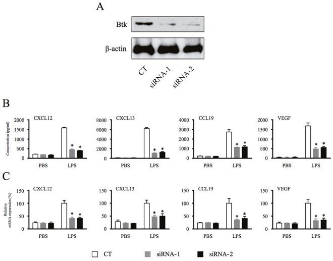 Depletion of Btk inhibits macrophage production of homeostatic chemokines and angiogenic cytokines.