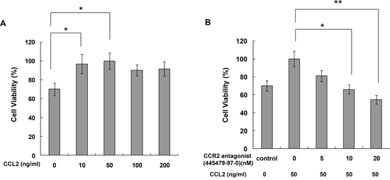 CCR2 antagonist inhibited CCL2-mediated A549 cell proliferation in vitro.