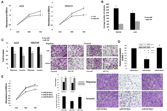 miR-128 inhibits gastric cancer migration, invasion, and proliferation by targeting Bmi-1.