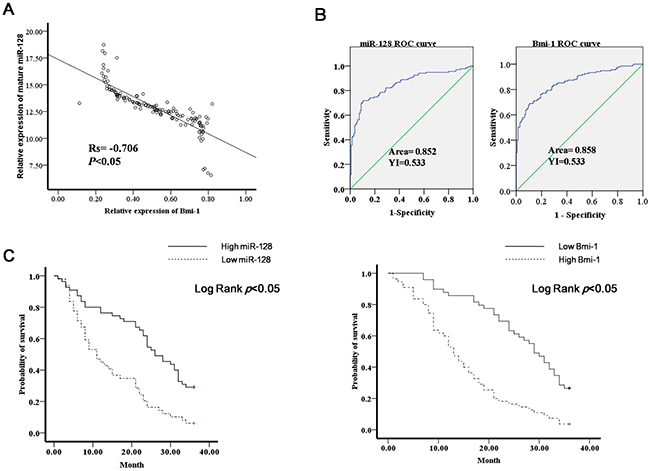 Diagnostic and prognostic significance of miR-130a in gastric cancer.