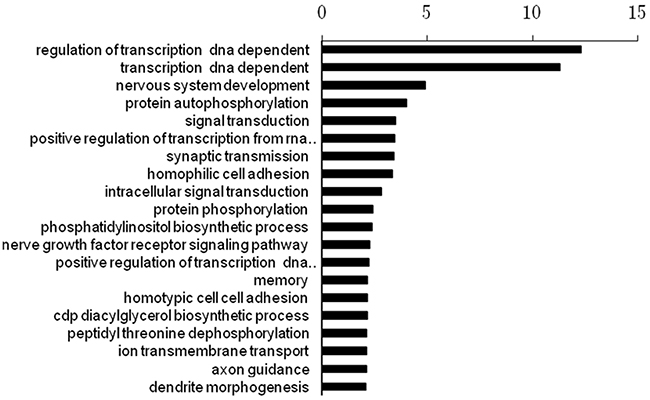 The top 20 enriched functional analysis from Gene ontology (GO) analysis.