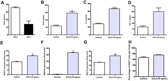 Comparative production of CCL3 by metastatic HN12 and non-metastatic HN13 tumour cell lines.