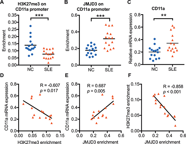The relationship among H3K27me3 enrichment, JMJD3 enrichment, and CD11a mRNA expression in SLE CD4+ T cells.