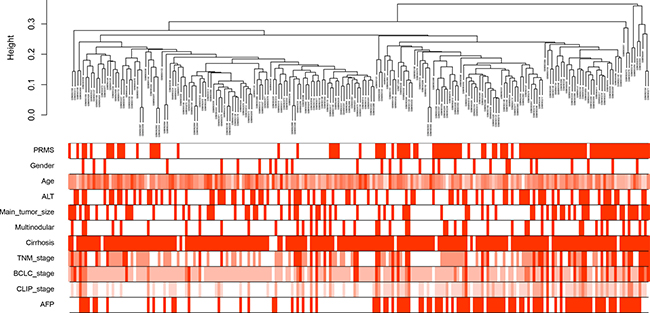 Clustering dendrogram of 214 tumor samples and the clinical traits.