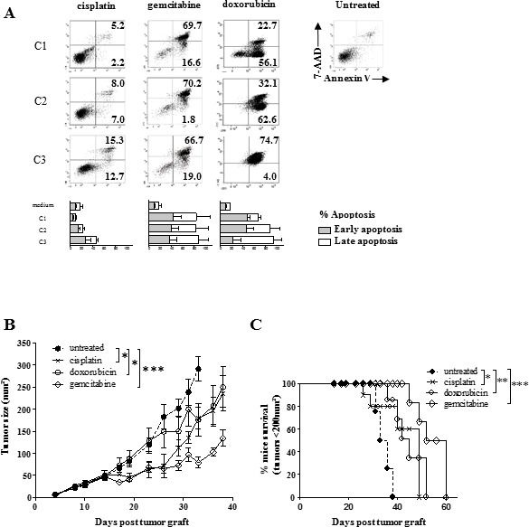 Effect of human sarcoma-related cytotoxic drugs on SARC-L1 cells.