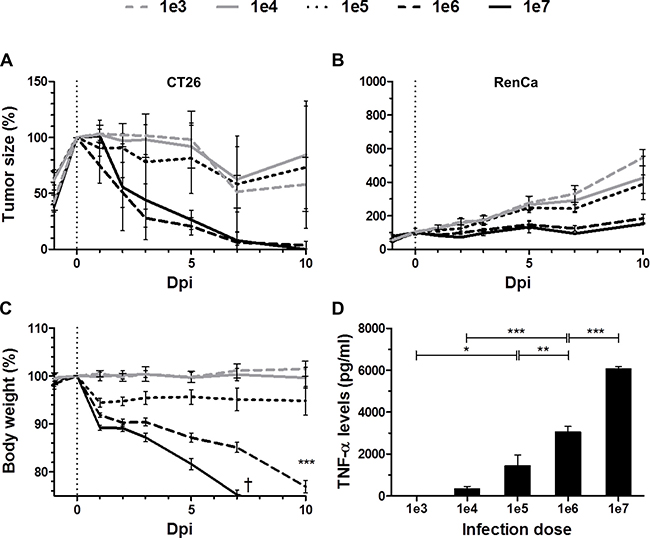 Dose-response relationship between SL7207 and therapeutic effects.
