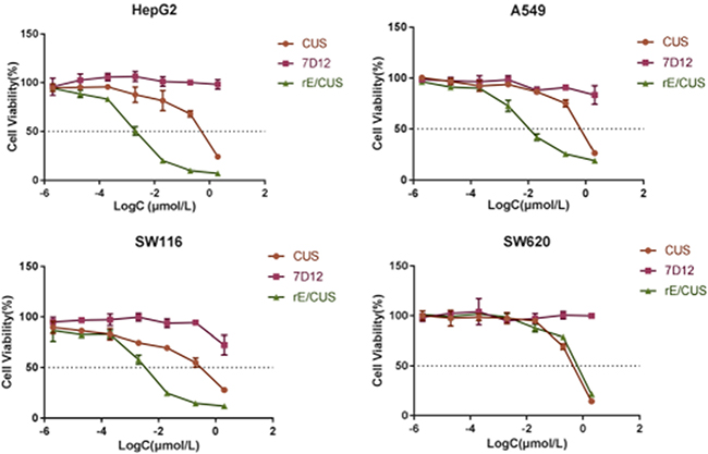 Cytotoxicity of rE/CUS in HepG2, A549, SW116 and SW620 cells through SRB assay.