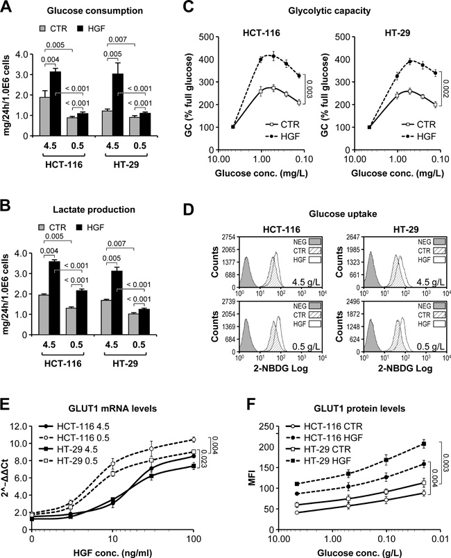 HGF sustains glycolysis in low glucose by promoting GLUT1-mediated glucose uptake.