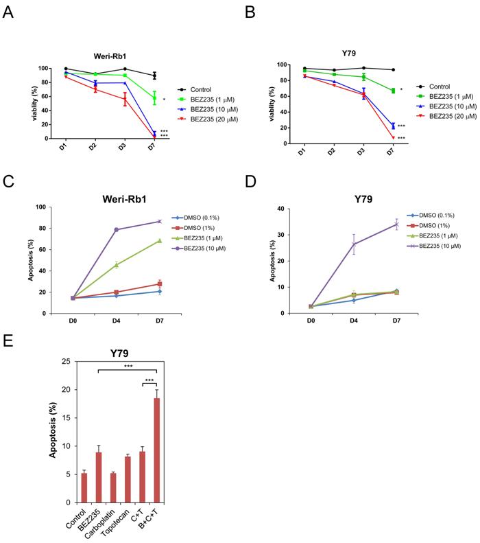 BEZ235 inhibits the growth of human retinoblastoma cell lines.