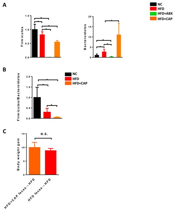 Effects of capsaicin on gut microbiota.