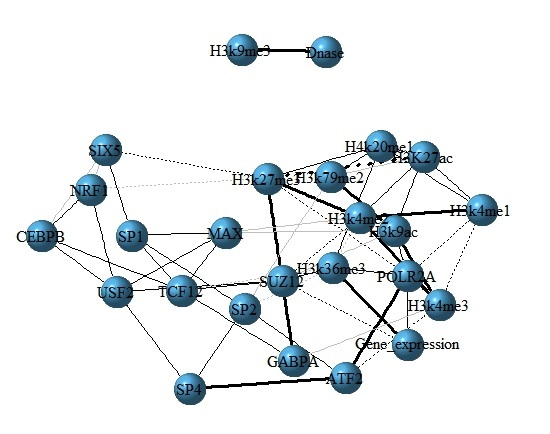 The interaction network among TFs, HMs and gene expression for H1 cell line.