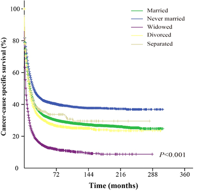 Survival curves of AML patients based on their marital status.
