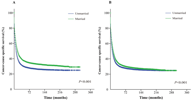 Kaplan-Meier survival curves: The cancer-caused specific survival of unmarried and married groups of matched and unmatched AML patients.