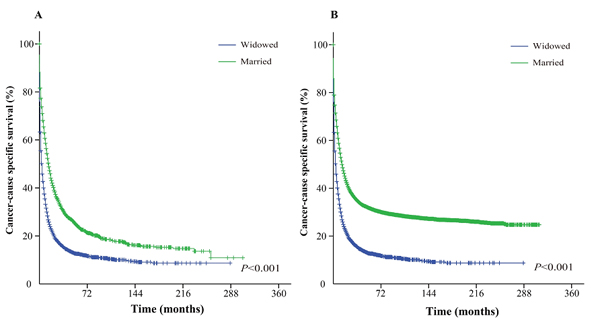 Kaplan-Meier survival curves: The cancer-caused specific survival of widowed and married groups of matched and unmatched AML patients.