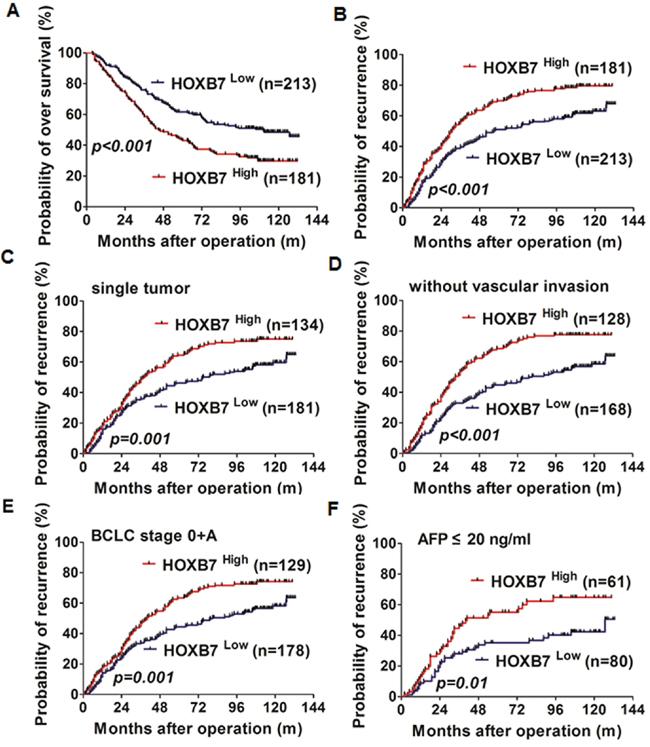 HOXB7 and prognosis of HCC.
