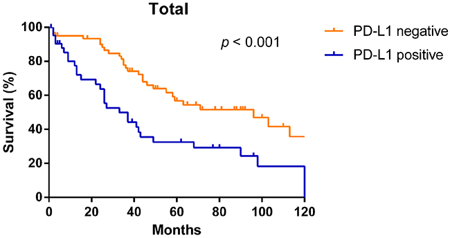 Kaplan–Meier overall survival curves according to PD-L1 expression in NSCLC patients.