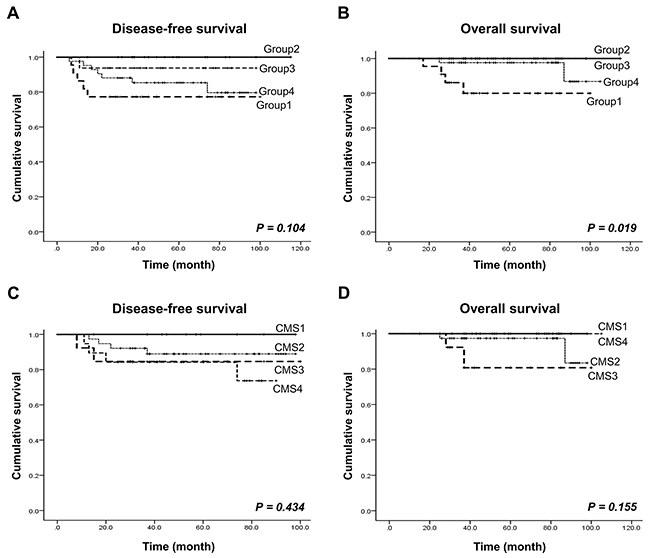 Patient survival rate analysis according to our CRC molecular subtype and the CMS.