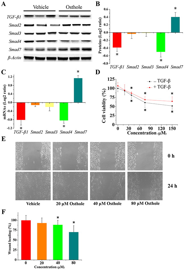 Alteration in gene expression of TGF-β/Smads signal pathway.
